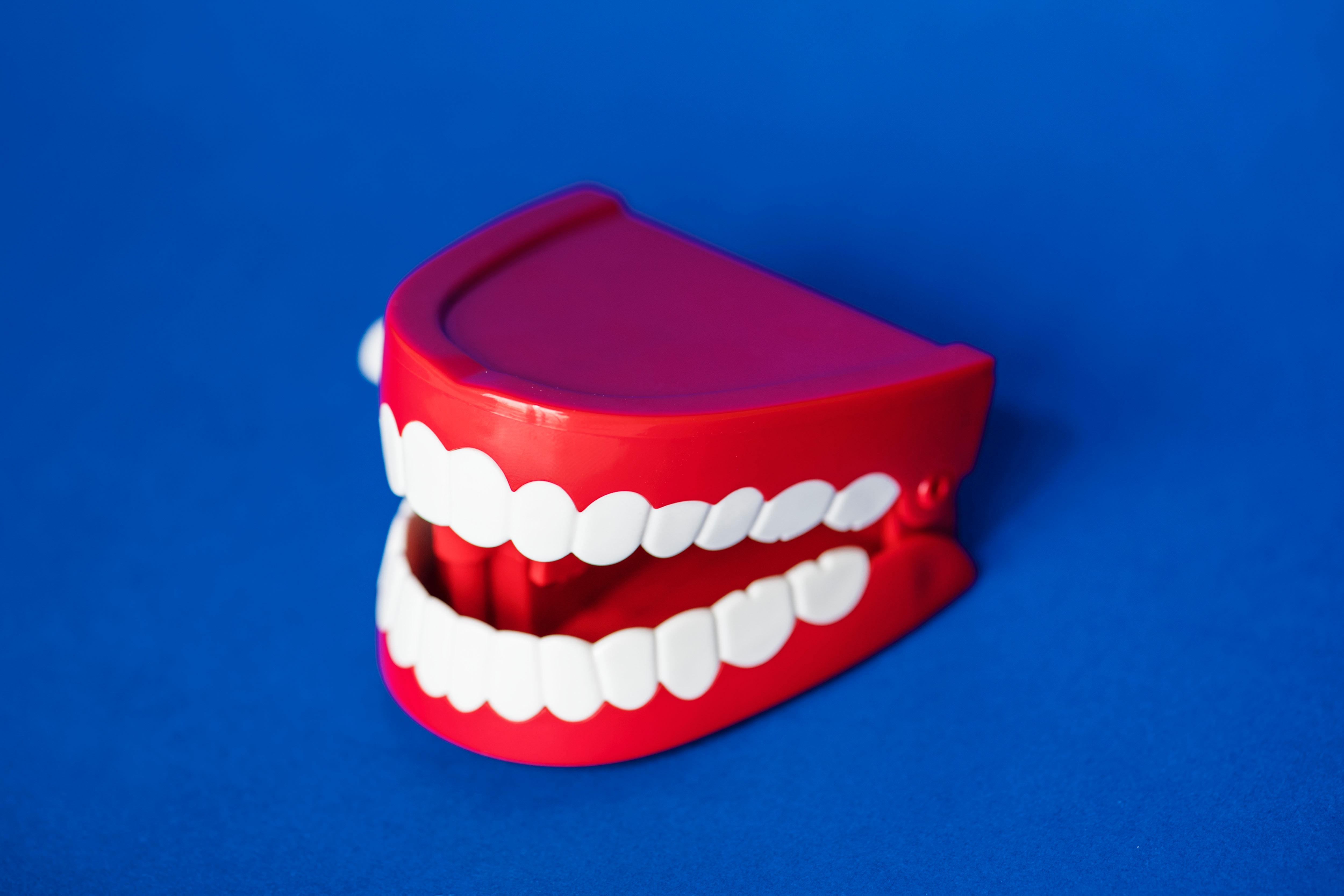 Best Dental Clinic in St Paul MN